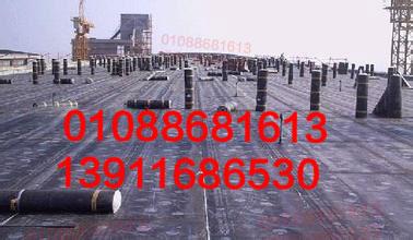 北京朝阳区屋顶楼顶防水公司88681613