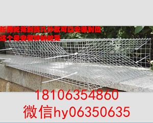 泉城笼业直销蛇笼热镀锌折叠捕蛇笼质量保证支持批发定做