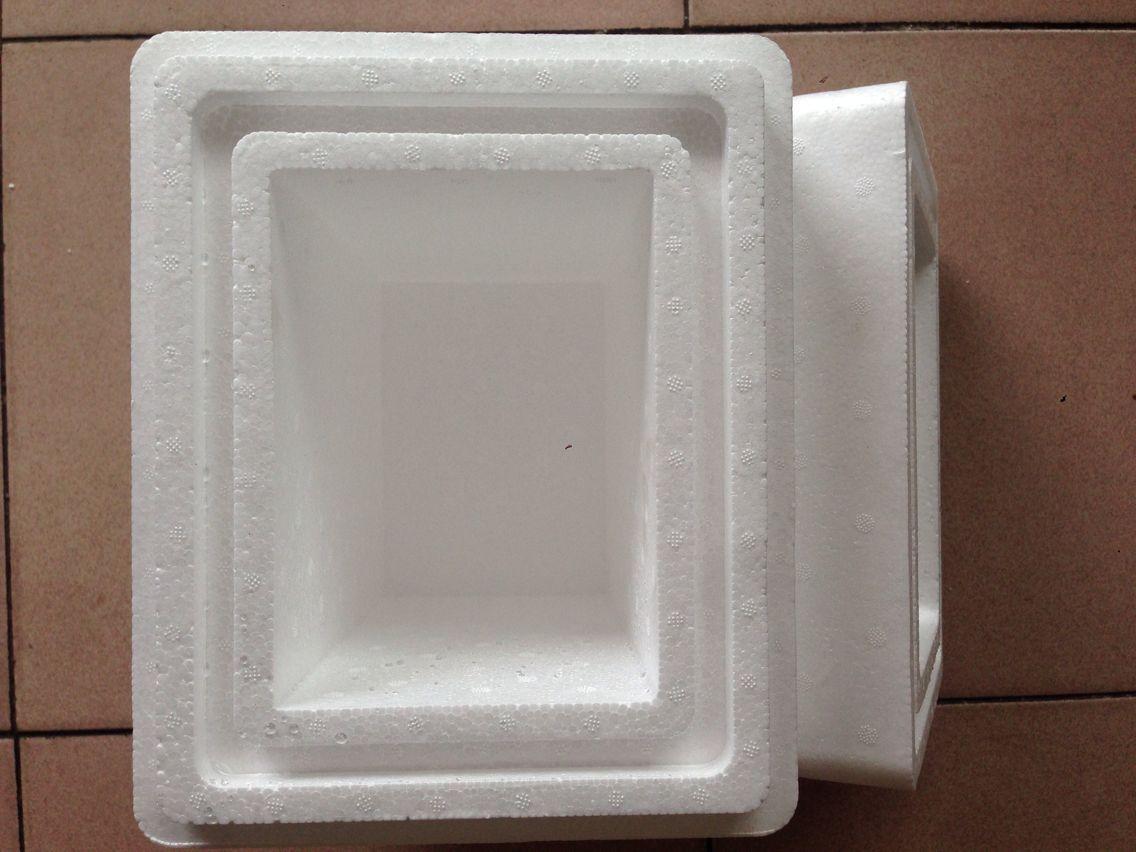 小容量泡沫箱 加厚高密度泡沫保温箱 干冰保存运输 生物医药专用箱