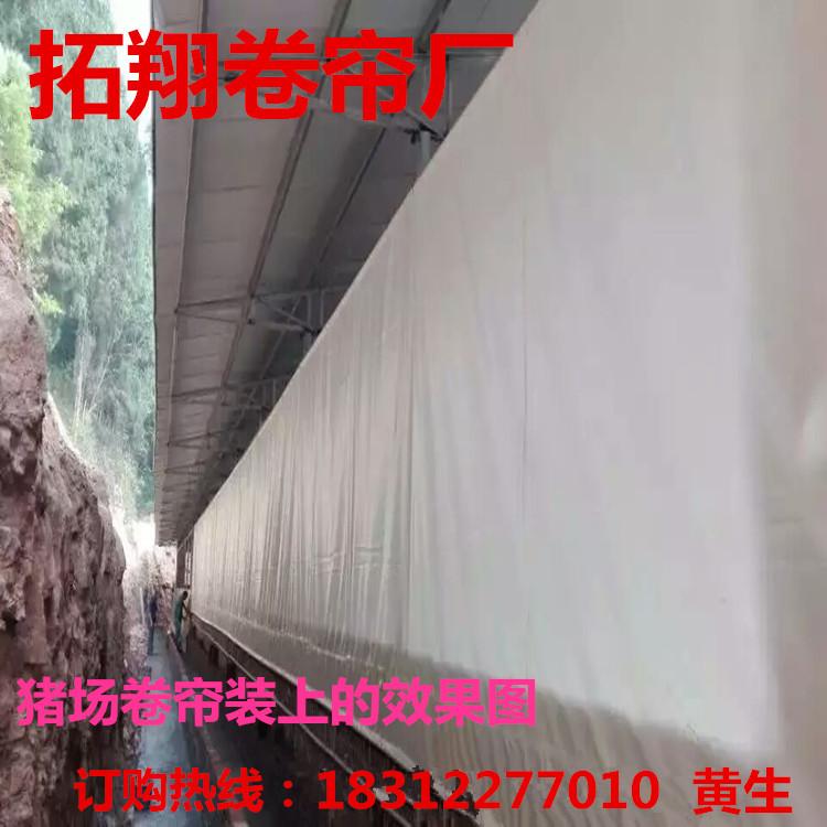 云南文山耐老化猪场透光卷帘布、防寒优质养殖场卷帘、保温卷帘布批发和定做
