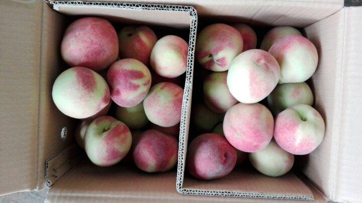 水果批发市场代销