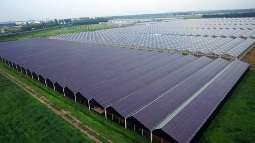 成都太阳能光伏发电农业大棚电站