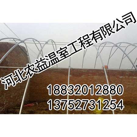 邯郸大棚骨架-农益温室厂家-邯郸大棚骨架造价