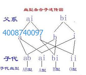 沈阳华医大司法鉴定所