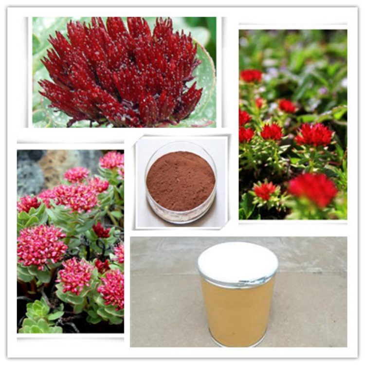 七叶树提取物 20%-101%七叶皂甙 抗炎消肿