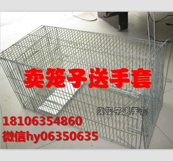 厂家供应流浪猫救助笼独立诱饵间防野猫笼质量保证 加密加固