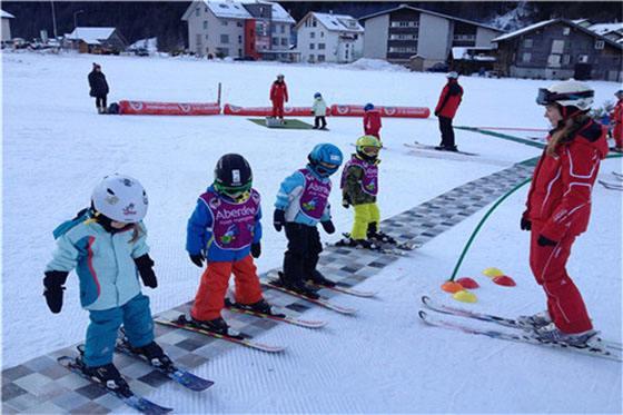 滑雪板 优质双板滑雪器材厂家
