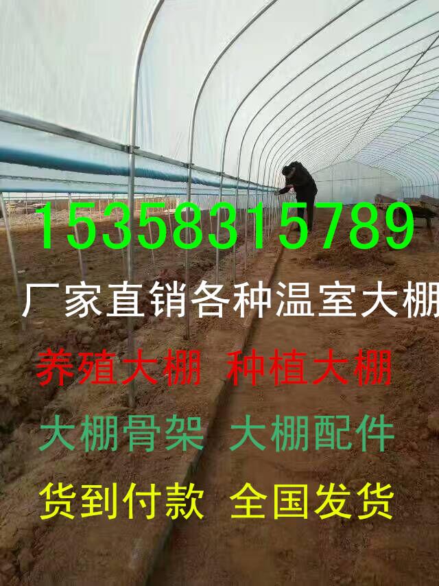 温室大棚 蔬菜温室大棚花卉温室大棚温室大棚骨架