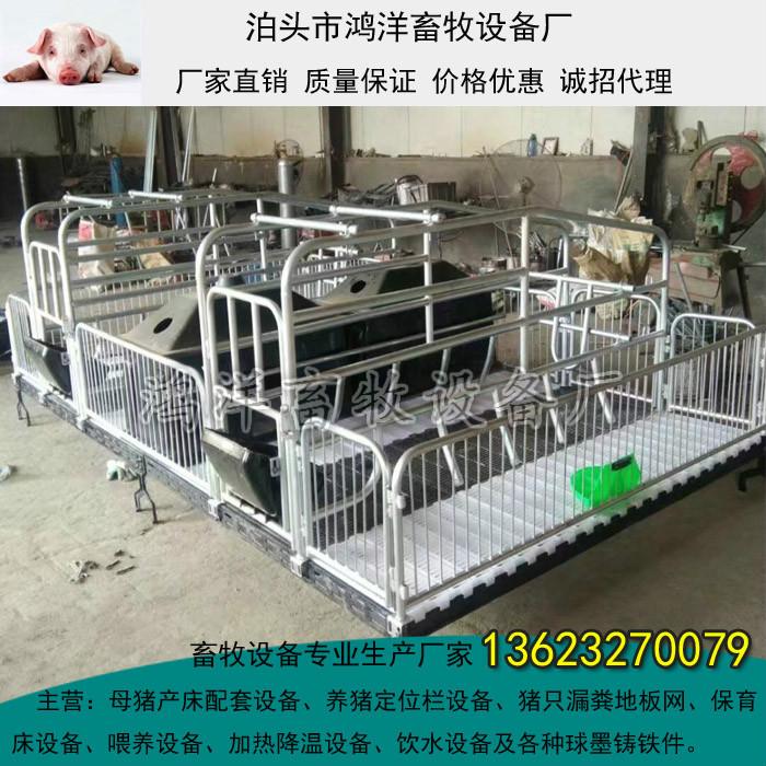 鸿洋2.0镀锌管双体母猪产床价格复合板母猪产床漏粪板生产销售