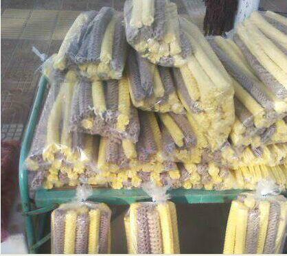 玉米杂粮食品机械