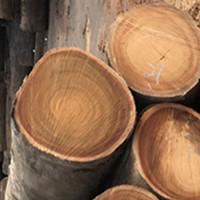 柳桉木凉亭,柳桉木栏杆,柳桉木防腐木