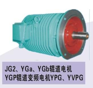 YGA,YGP变频辊道电机