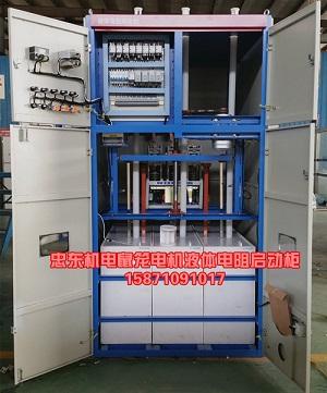 液阻启动柜内部结构简介(专业启动大型电机)