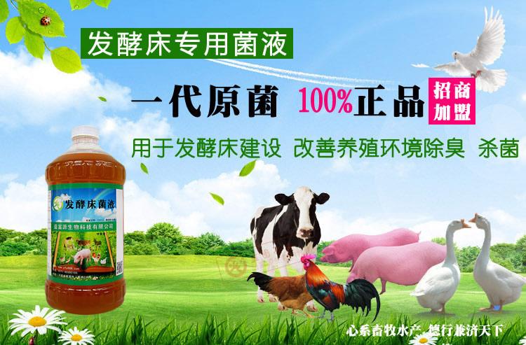 养鸡发酵床专用菌种什么价格开封周口商丘西华鹿邑