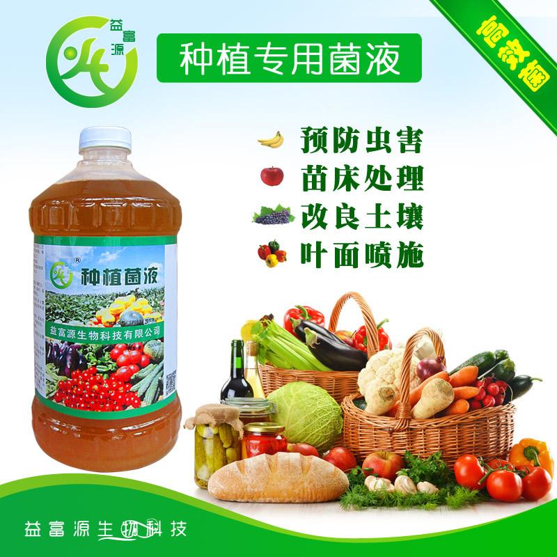 瓜果蔬菜种植前em菌的使用配比