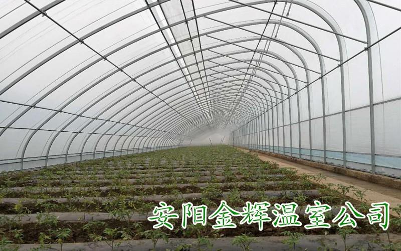 椭圆管温室大棚骨架,四季钢架大棚安装,安阳金辉温室公司