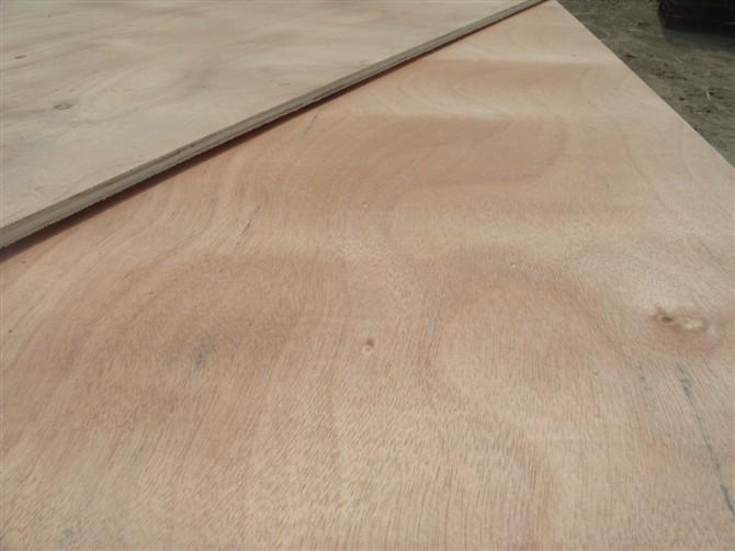 一次成型包装板 多层板 杨木胶合板 15mm
