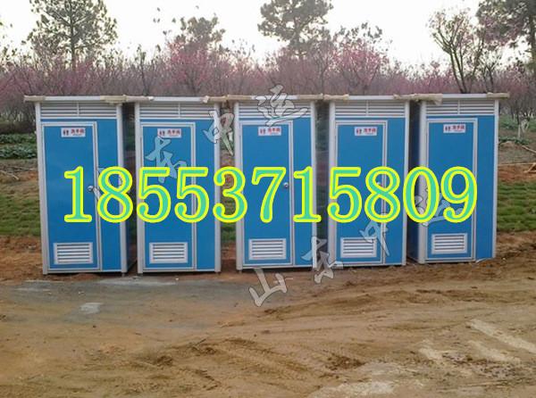 移动式卫生间 直排式厕所 工地环卫厕所
