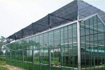 承接攀枝花/泸州/德阳花卉温室大棚温室大棚育苗室生态餐厅