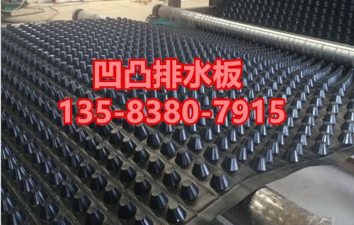 20高塑料排水板价格