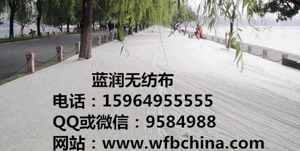 石家庄无纺布,大连无纺布,海南无纺布,香港无纺布,广西无纺布15964955555