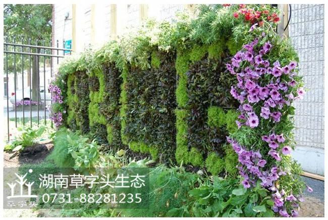 湖南草字头生态立体绿化