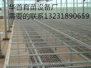 温室苗床网【华首】厂家专业生产销售