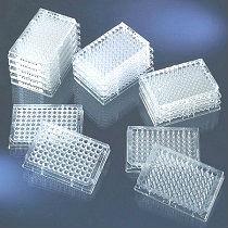 人羧甲基赖氨酸(CML)ELISA试剂盒供应商