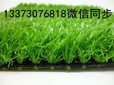 人造草坪休闲草坪13373076818