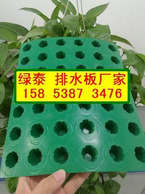 20厚蓄排水板〃泰州(车库排水板批发15853873476