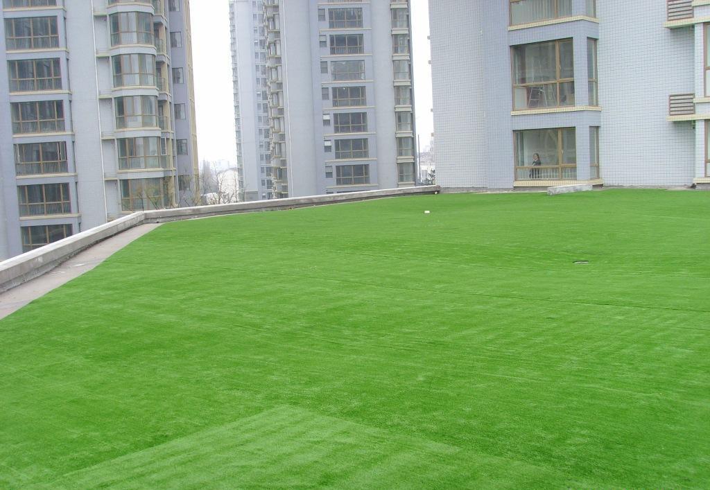 四川人造草坪建设