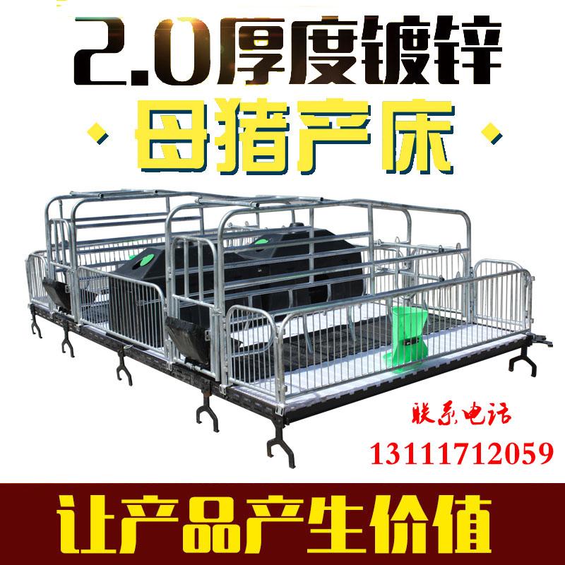 福宇养猪设备厂厂家直销母猪产床 双体产床 猪床