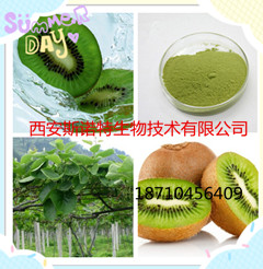 天然维生素C猕猴桃粉(果粉)猕猴桃酵素
