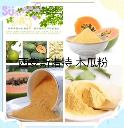 木瓜粉 木瓜原粉 100% 木瓜生粉 食品级 厂家直销 量大从优