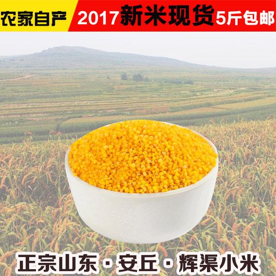 2017年安丘辉渠小米新米零售批发团购