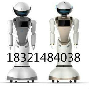 重庆智能机器人生产厂家