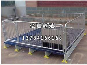 亿嘉生产销售小猪保育床双体保育栏