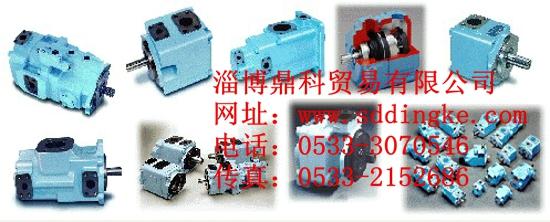 DENISON丹尼逊液压叶片泵T6DC 042 01