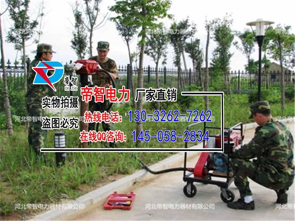 上海防汛大桩机,帝智优质打桩机生产厂家