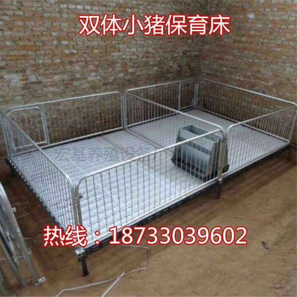 河北宏基养猪设备供应高培保育栏 仔猪育肥床