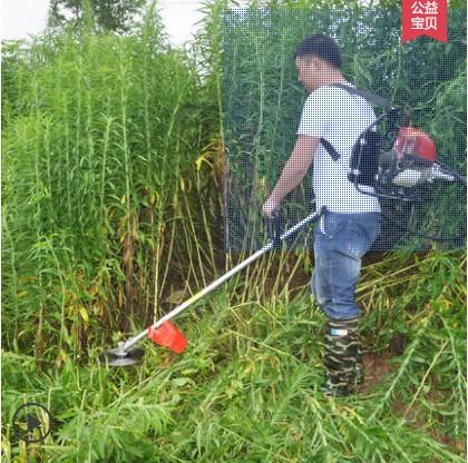 草坪专用割草机背负式割草机
