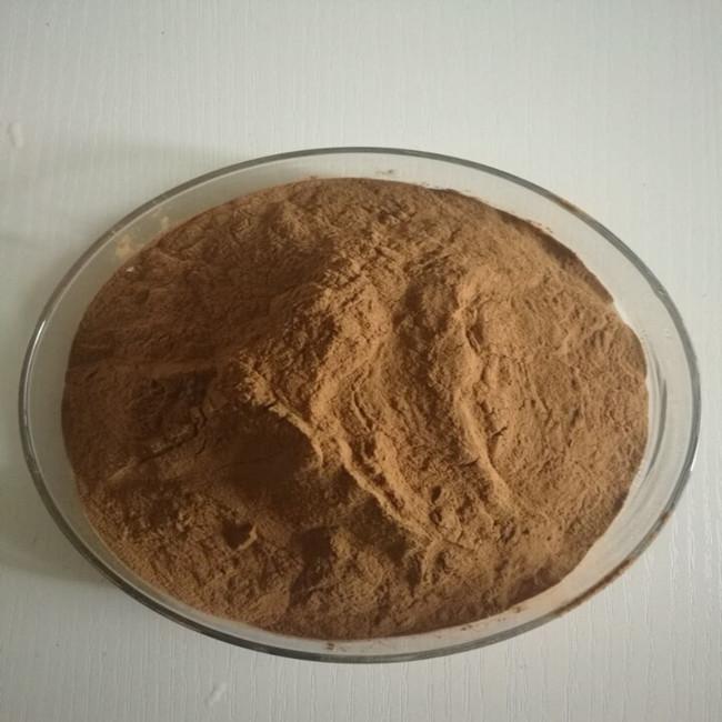蒲公英提取物/蒲公英黄酮1%-20%