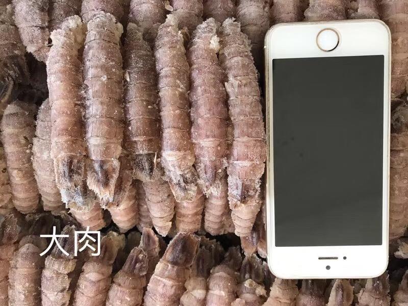 虾爬饺子馅怎么做好吃 2018皮皮虾市场价格