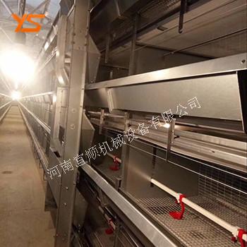 層疊式育雛籠 自動化養雞設備