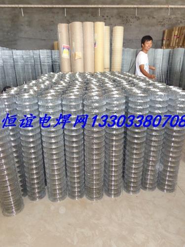 专业生产冷镀锌电焊网 铁丝网厂家