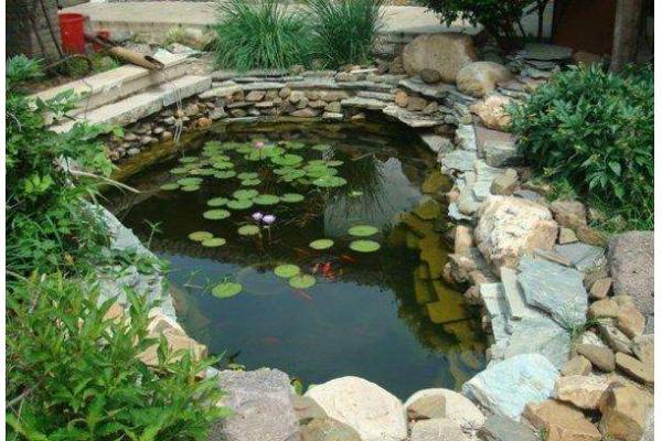 濟南錦鯉魚魚池濟南建魚池濟南室外的魚池濟南魚池水