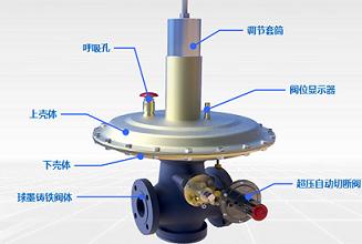 新型工業用天然氣壓力調節閥減壓閥RTZ-80AQ