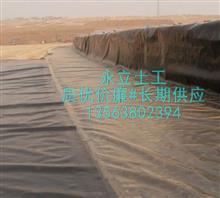 专业生产土工膜/绿化土工布