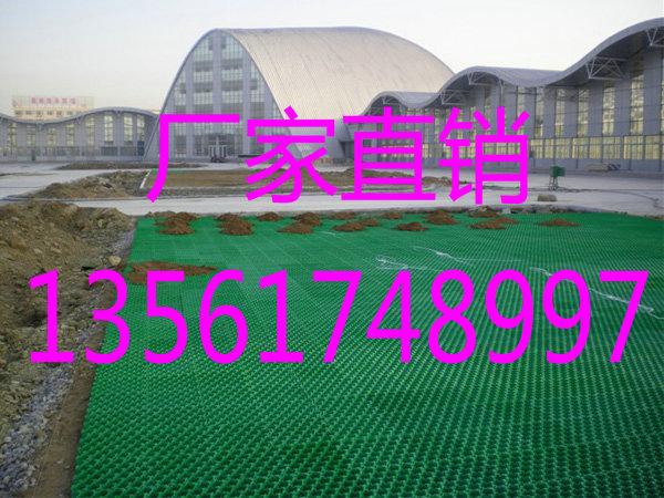 新疆双利植草格供应性价比最高