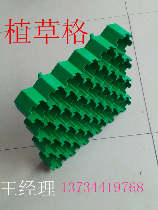 烟台绿都建材现货供应5公分植草格